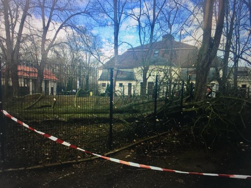 Schwere Sturmschäden am Haus Auensee