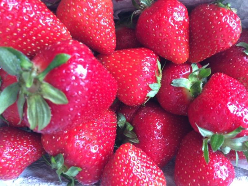 Erdbeeren aus Deutschland direkt vom Kreuz