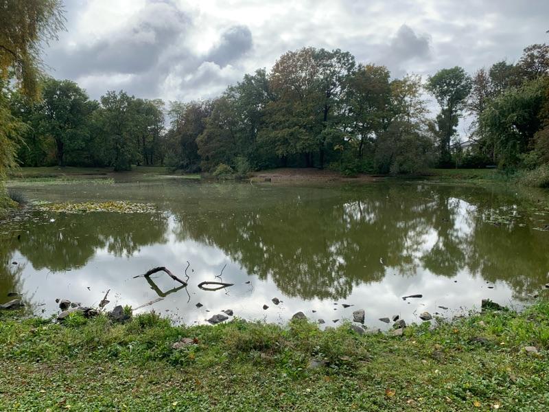 Teich im Stünzer Park