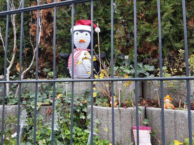 Olaf läutet die Saison ein!