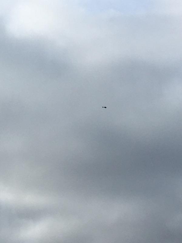 Hubschrauber kreisen stundenlang über Berlin Mitte