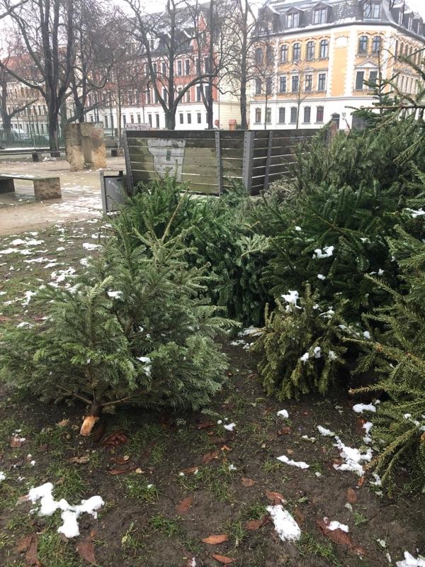 Ablagestelle für Weihnachtsbäume Altlindenau