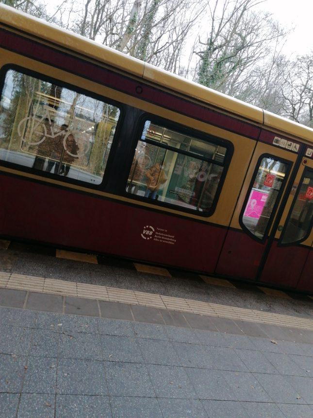 S-Bahn in Waidmanslust steht still